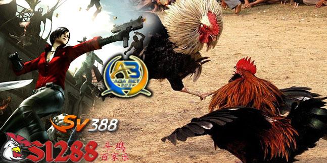 Agen Adu Ayam